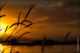 Sunrise On Taal Lake