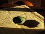 Morning sun appreciates home-made pottery...