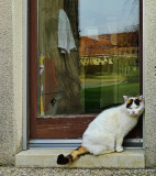 Happines is knowing that someone is always ready to open the door to you...