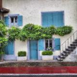 Swiss domestic Monsoon…