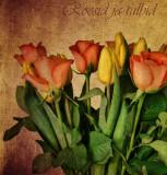 Roses & Tulips...