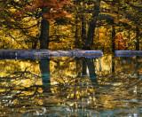The Fairies' Pond 70