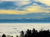 We are above the sea of fog...