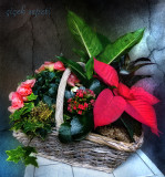 A basket of flowers...