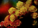 Company of roses....