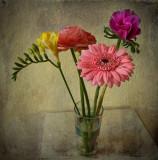 Individualism in flowers