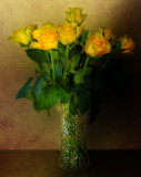 Yellow roses for an old lady...