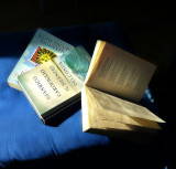 Early morning sun likes reading...