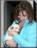 Little Helen pups  120124 001.jpg