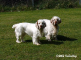 Marlo and Keely  120414 013.jpg