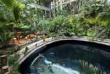 dallas world aquarium and zoological garden