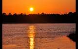 Tuckahoe Wildlife Preserve