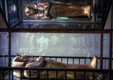 King Tut's mummy case –solid gold