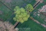 2011-04-20_174.jpg