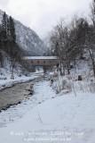 kwt_2011-01-20_358.jpg