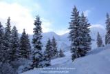 kwt_2011-01-22_450.jpg