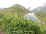 kwt_2011-07-25_024.jpg