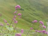 kwt_2011-07-25_026.jpg