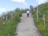 kwt_2011-07-26_115.jpg