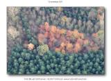 2011-11-12_101.jpg