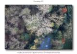 2011-11-12_108.jpg