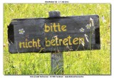 KWT_2012-07-05_387.jpg