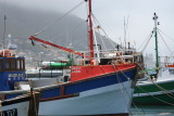 SIMONS TOWN . CAPE OF GOOD HOPE.015.JPG