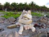 la bête de corail