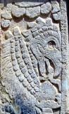 L'oiseau maya
