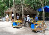 Taxis mayas