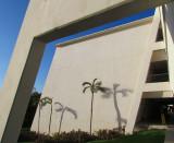 Sirenis, l'ombre des palmiers