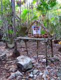 petit autel en pleine jungle