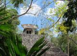 Un temple dans la jungle