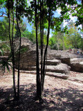 Dans les ruines de Coba