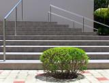 escalier du Spa
