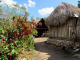 arrivée à la ferme maya