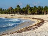l'arc de la plage