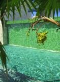 environnement vert du Spa