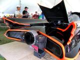 Bat trunk