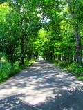 sur la route du mitan en été