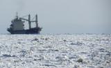 la voie maritime du Saint-Laurent en hiver