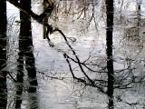 Redoux: des flaques et de la glace