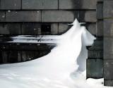Gandalf de neige