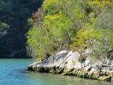 Sur les bords du rio Canimar
