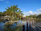 lac à l'ile aux cocotiers