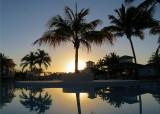 soleil derrière le cocotier