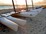 Catamarans attendant les marins