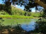 ouverture sur le rio