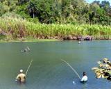 les pêcheurs du Rio