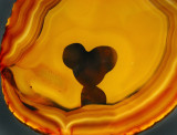 Mickey mouse agata